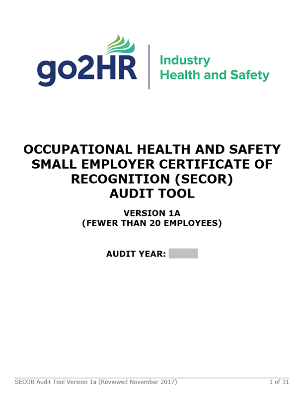 Small Employer Certificate of Recognition (SECOR) Program: Audit Tool